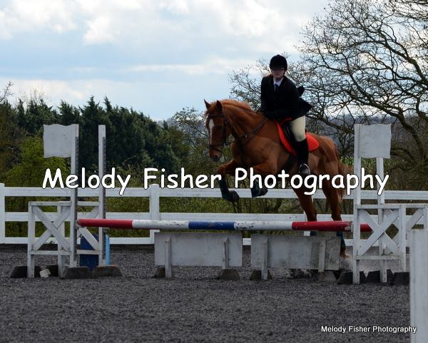 Scottie Jumping at his first show. Photo owned by Melody Fisher.