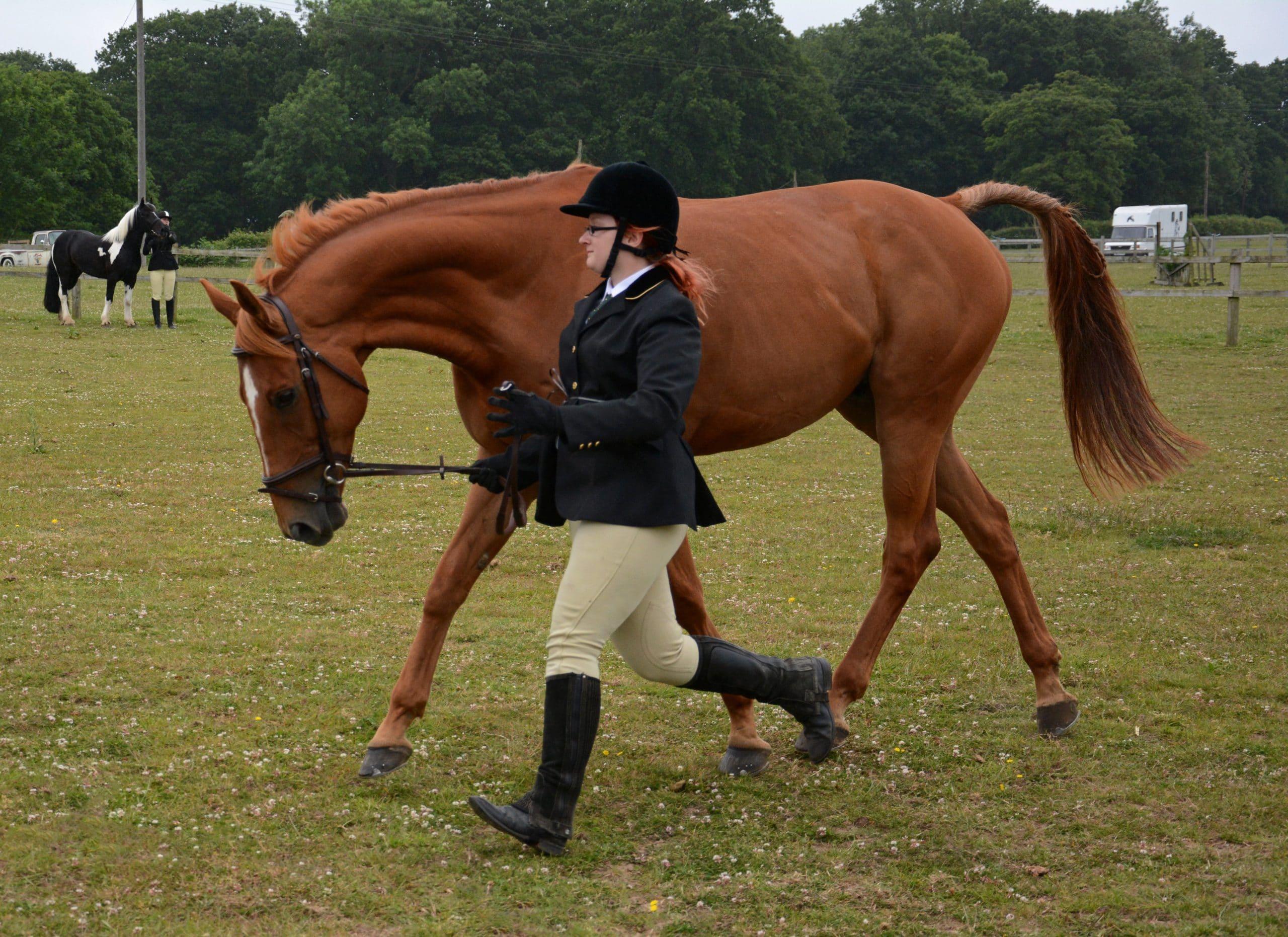 Highland Rain (38) showing scottie