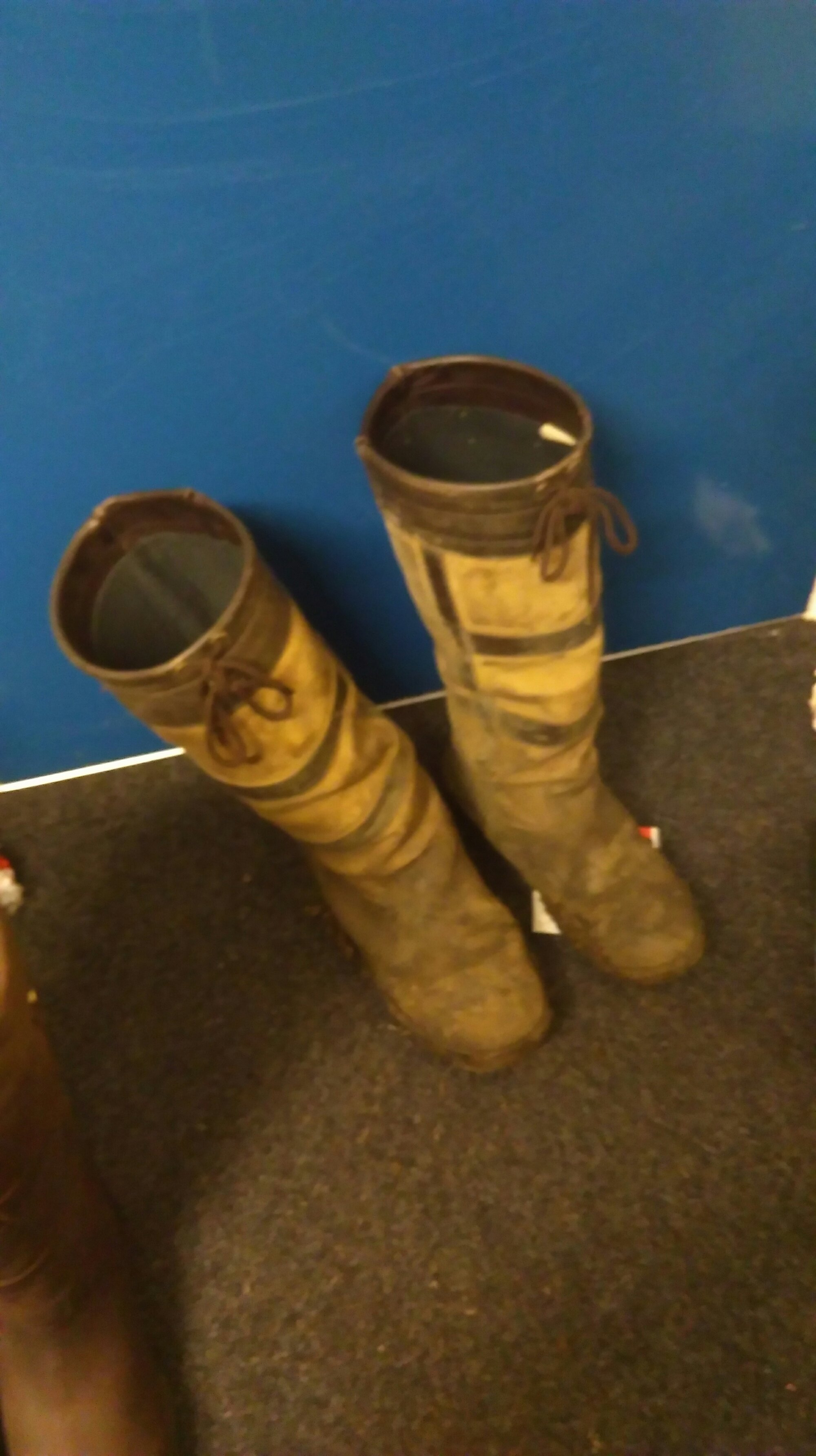 old mark todd country boots