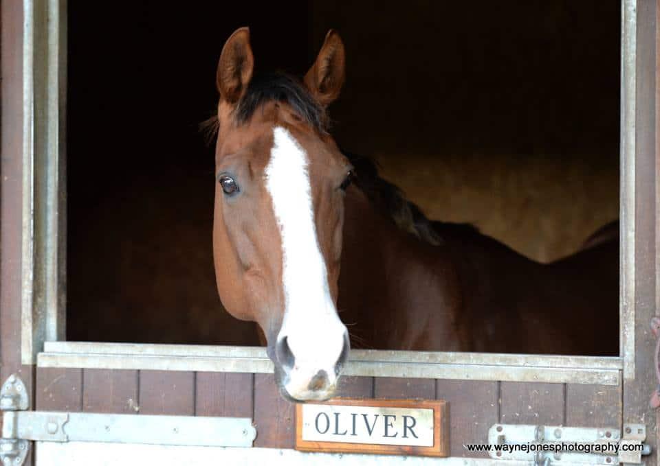 oliver.d