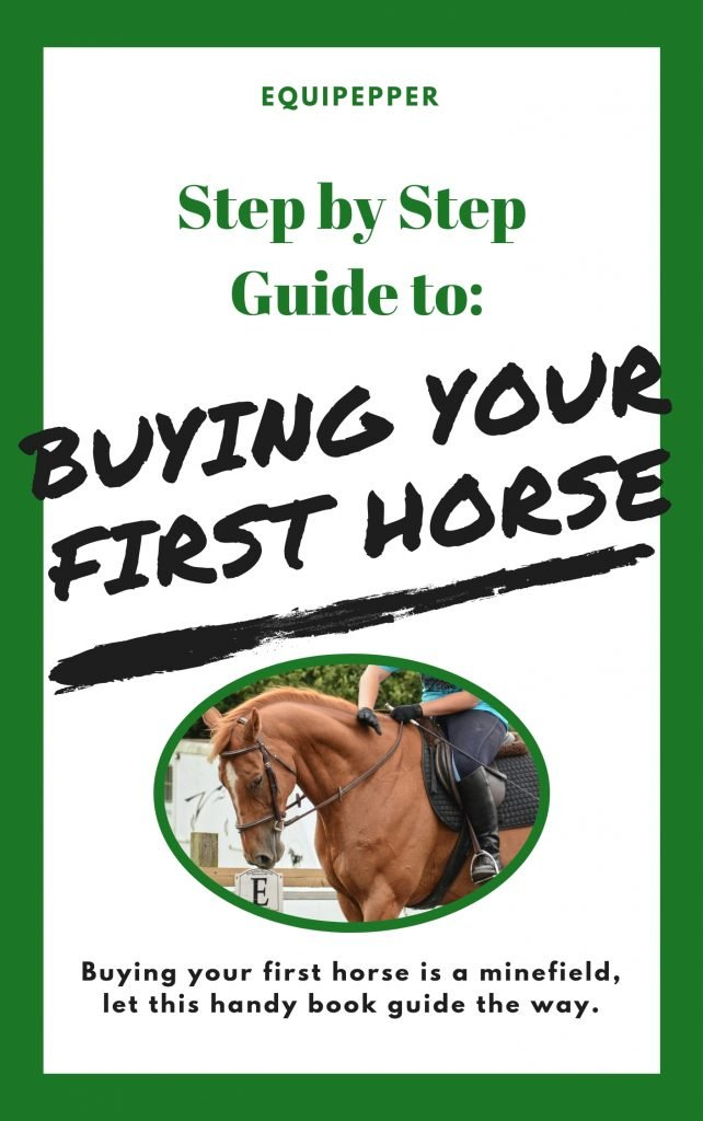 buying your first horse book cover