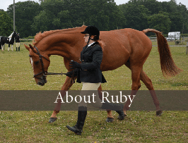 https://equipepper.com/about-ruby/