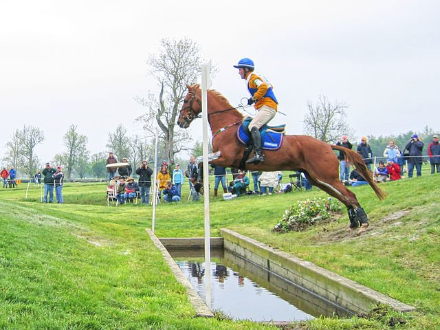 A chestnut horse jumping a ditch in the cross country phase of eventing.