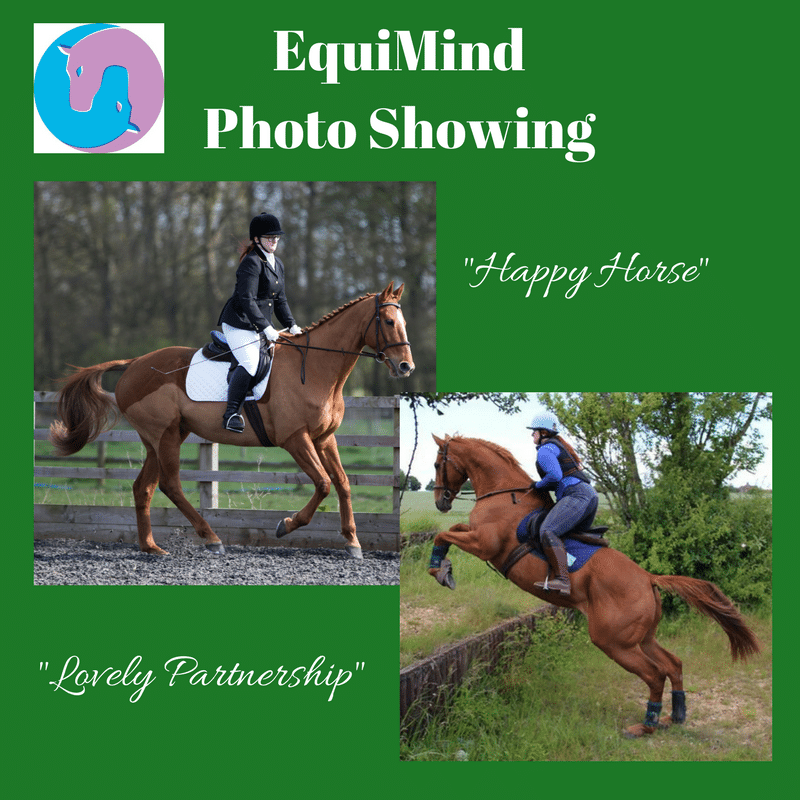 EquiMind Photo Showing