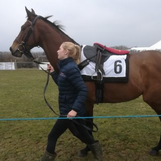 point to point racing. Lot's of race horse owners use syndicates to afford their horse.