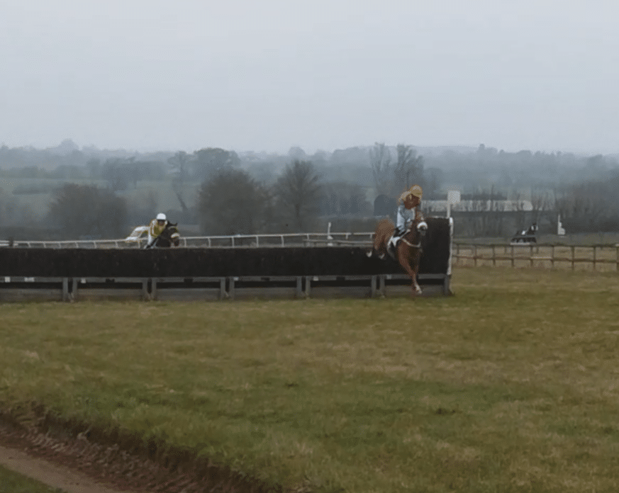 Horses jumping point to pointing before Cheltenham festival