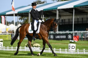 Mark Todd & NZB Campino at burghley dressage