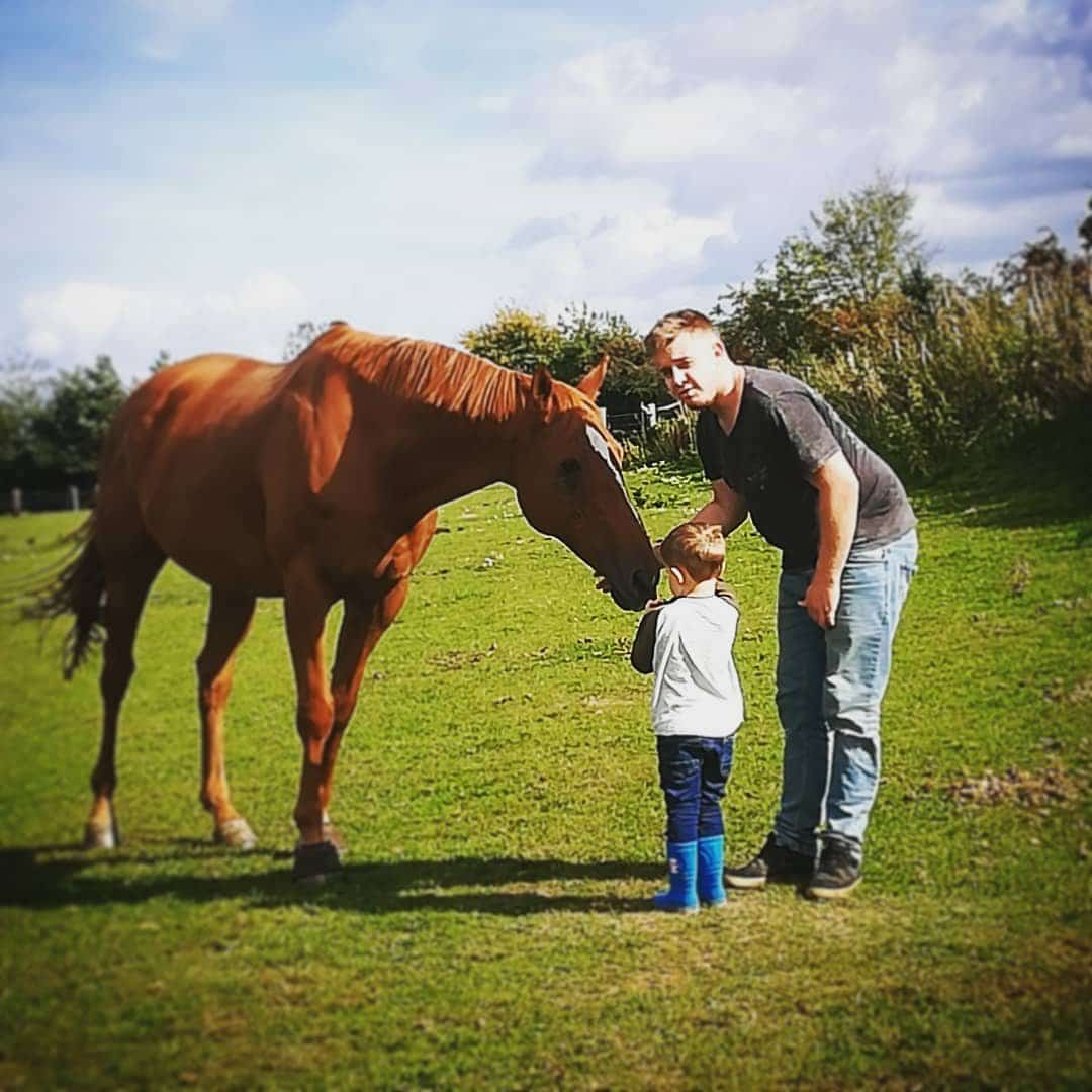 the boy and the bfg, introducing children to horses