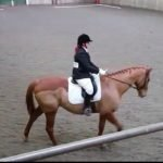 Scottie and me competing in dressage with our merino wool half pad white