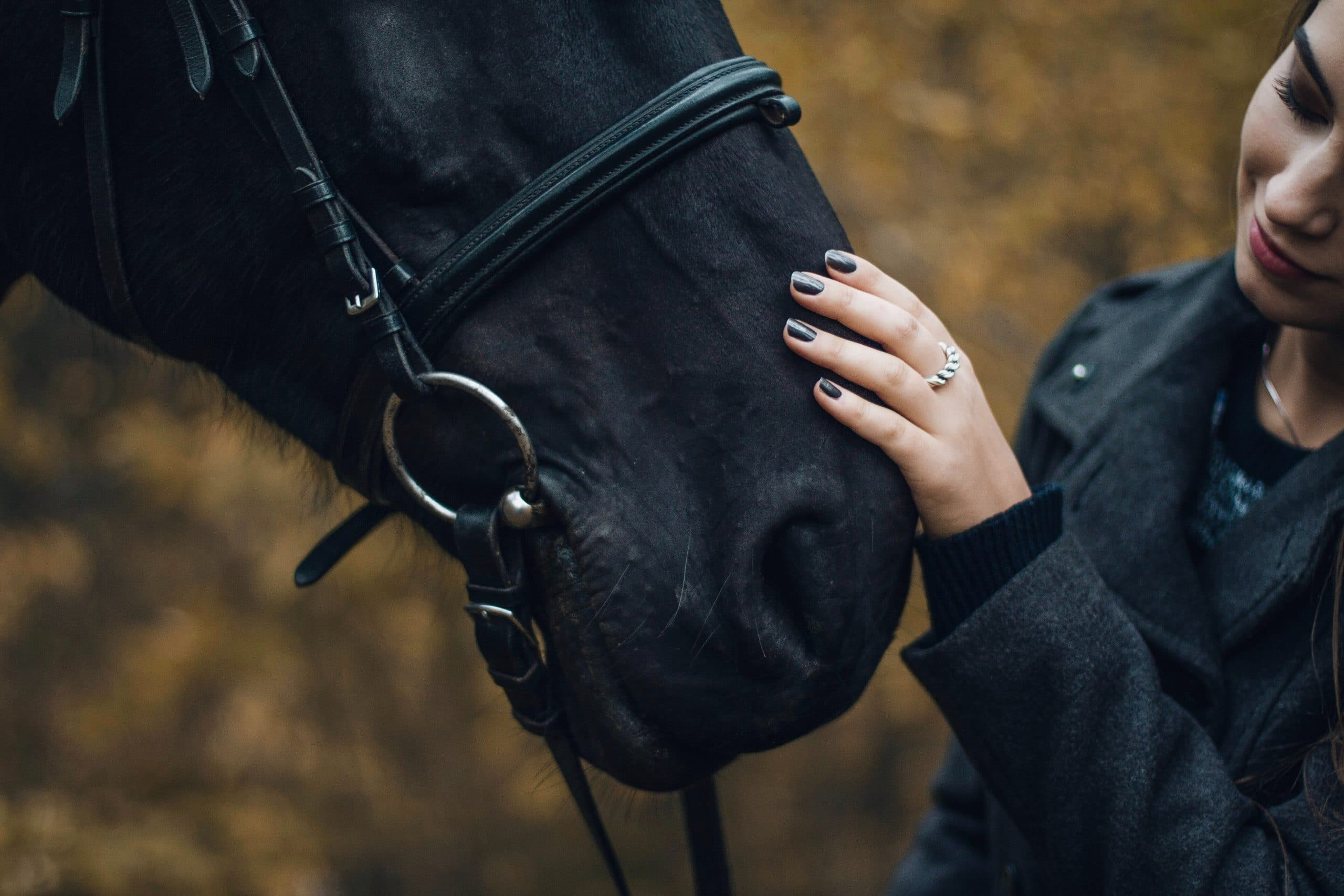 Affordable equestrian gear Photo by Ieva Vizule on Unsplash