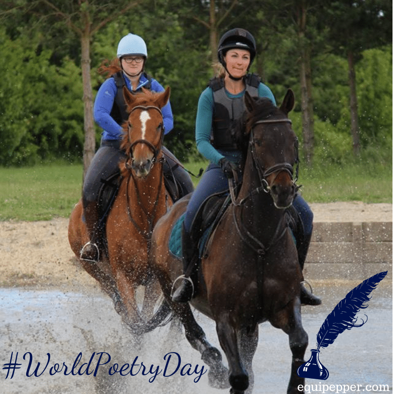 world poetry day, Scottie and friend cantering through water