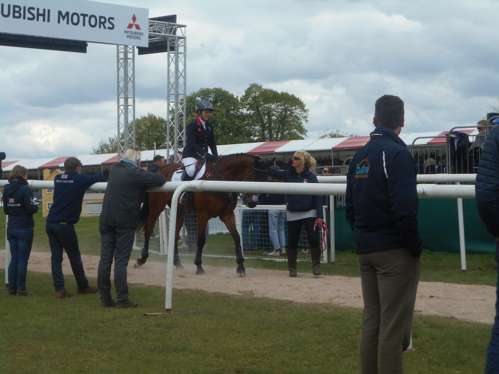 Arctic Soul after his show jumping at badminton