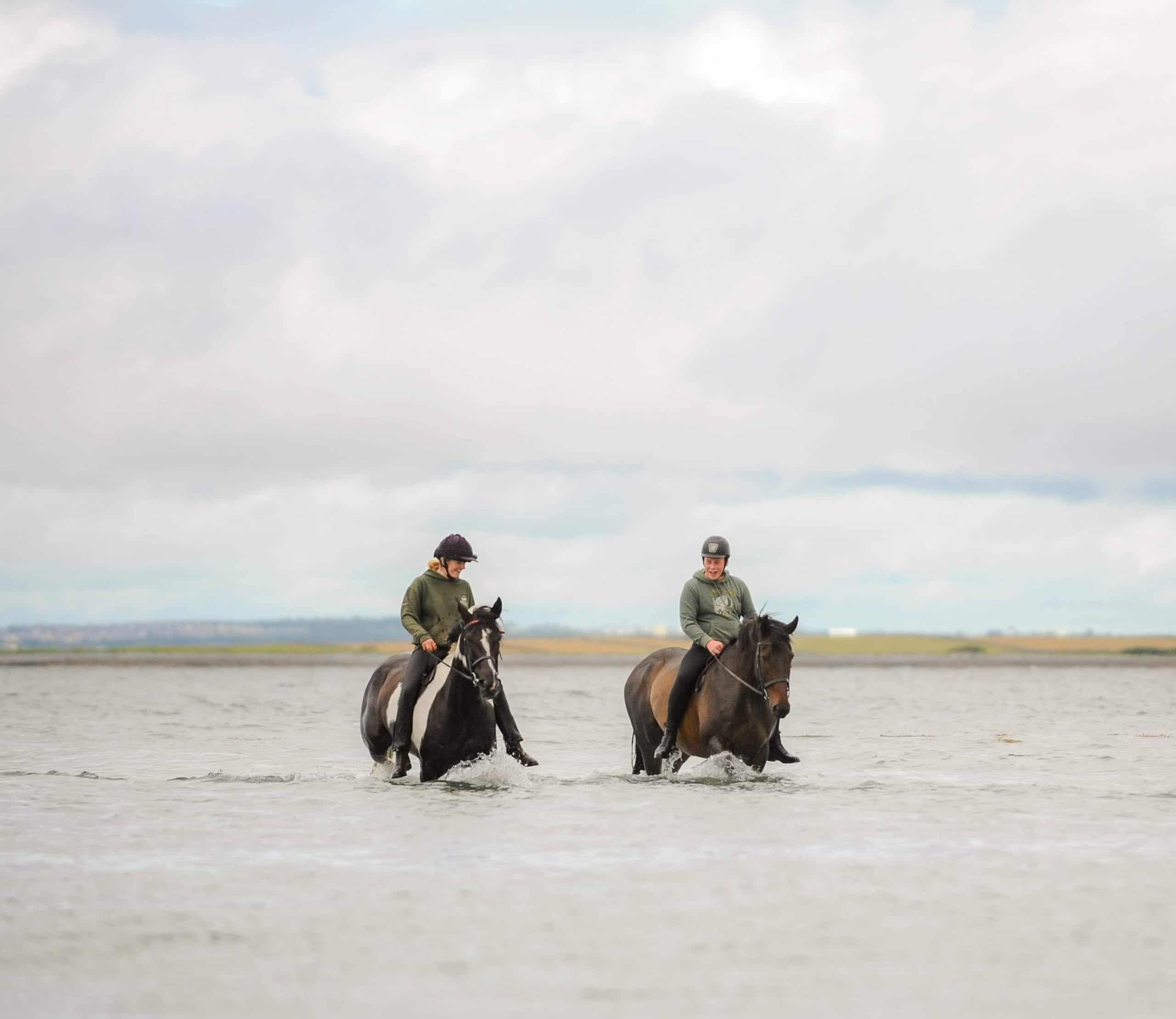 irish horse life blog