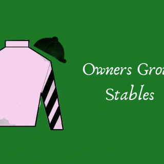 owners group stables