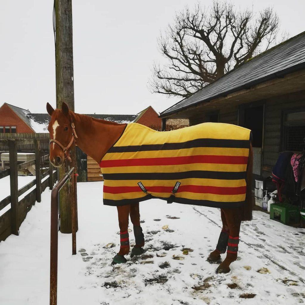 newmarket rambo fleece