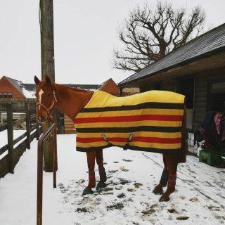 newmarket rambo fleece, money saving tricks this winter