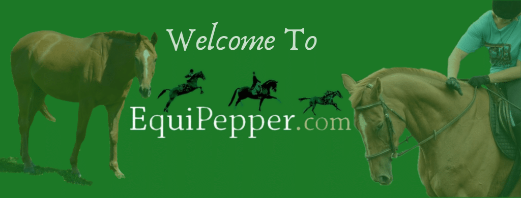 welcome to equipepper