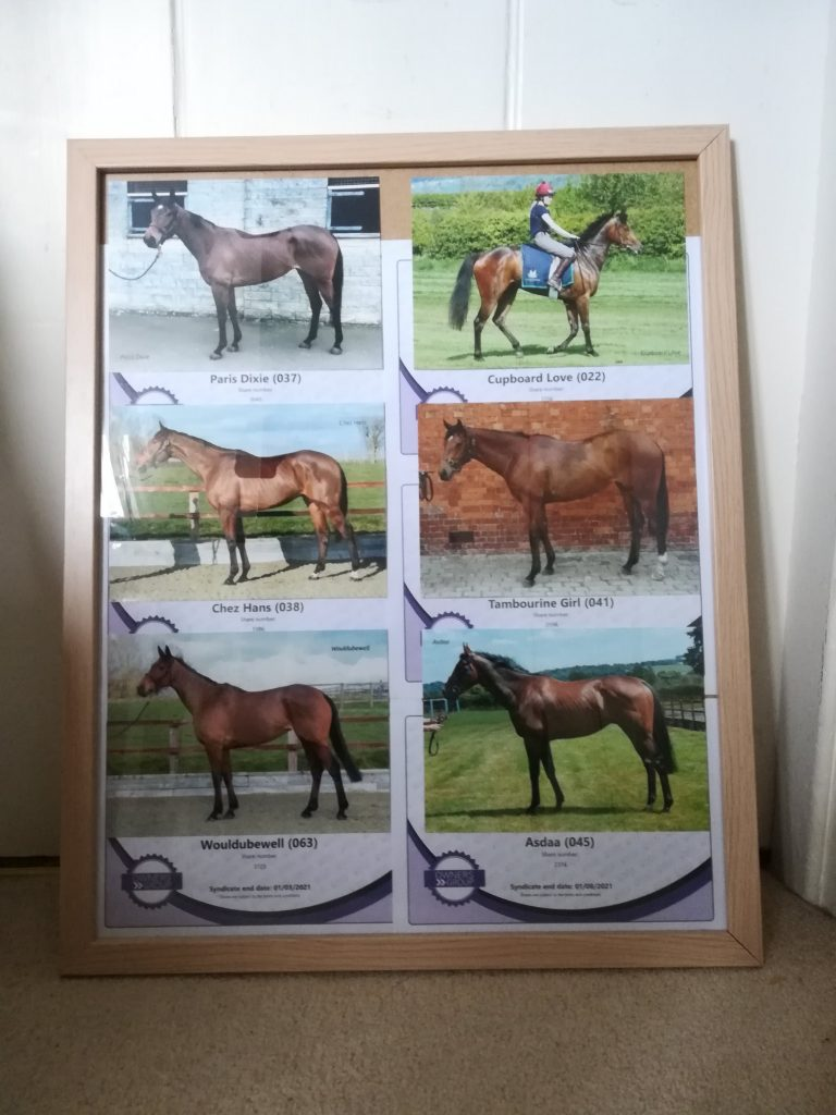 my owners group horses in a frame