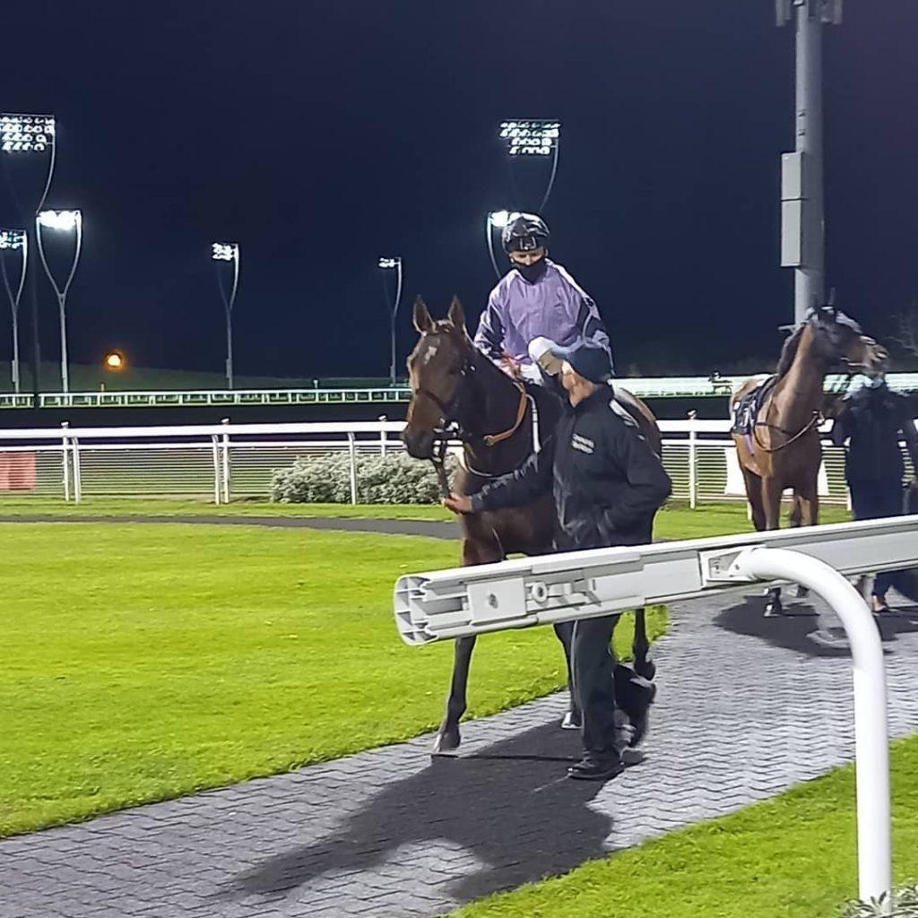 asdaa racehorse at chelmsford