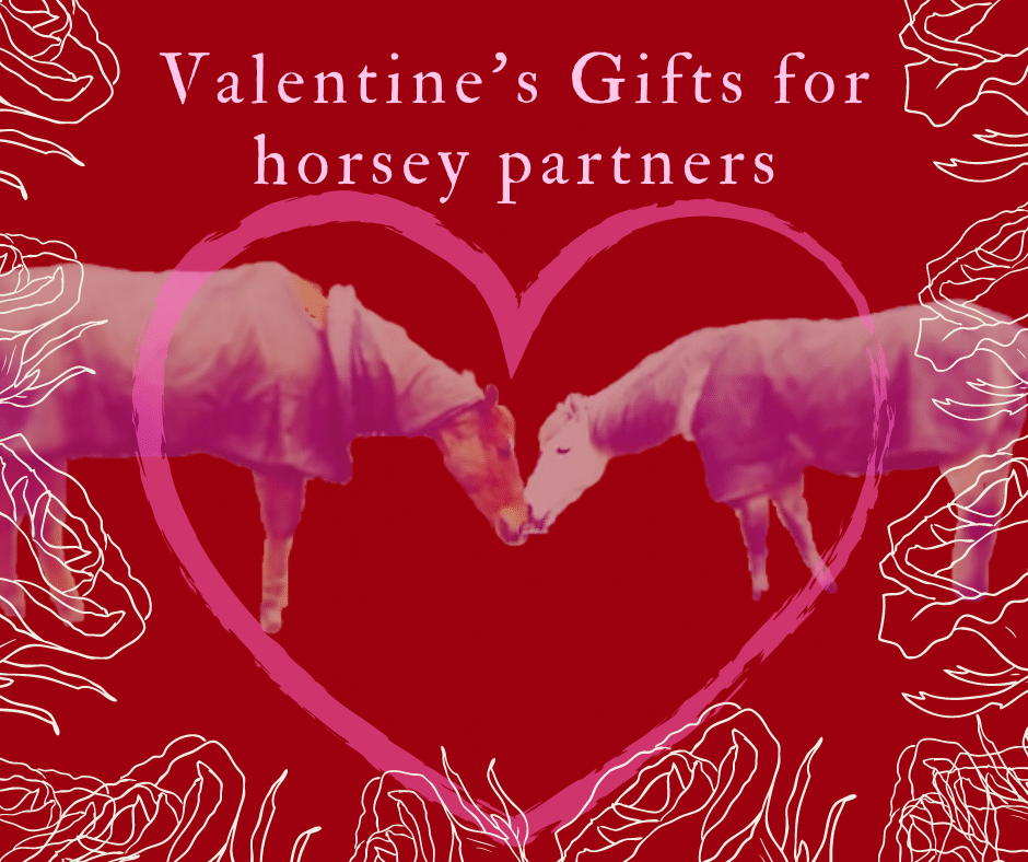 valentines gifts for horsey parnters