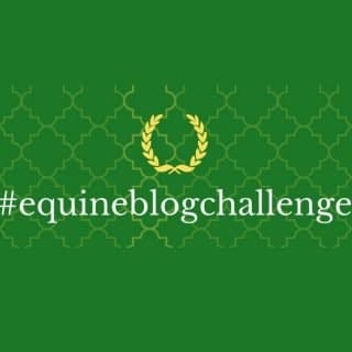 equipepper equine blog challenge