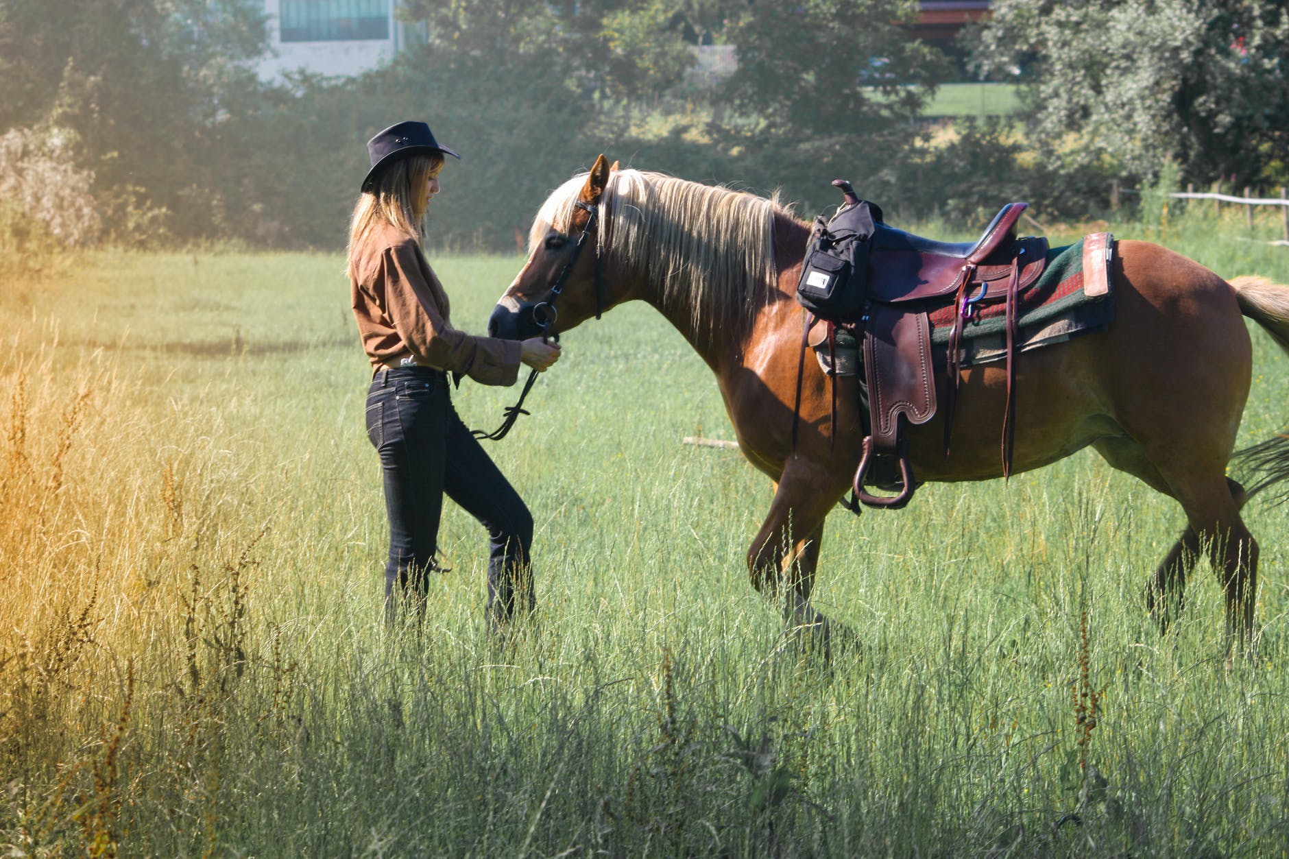 adult woman with horse on farm pasture